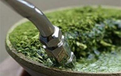 Chá de Erva-Mate ajuda a combater a diabete tipo 2