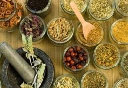 Usos e benefícios das ervas e plantas medicinais