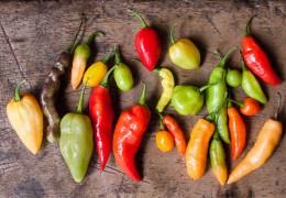 A pimenta e os seus poderes curativos