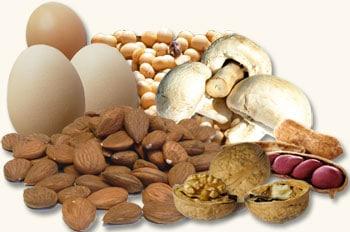 Os alimentos mais ricos em proteínas