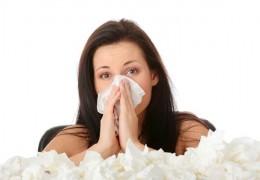8 remédios contra alergias respiratórias