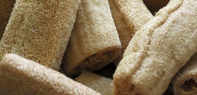 Melhore a sua pele usando esponjas vegetais