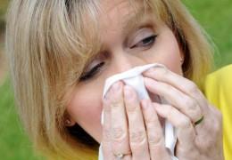 Remédios caseiros contra a rinite