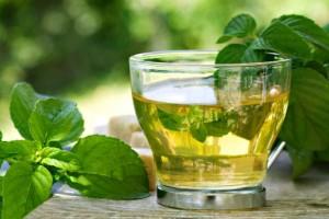 como tomar o chá de boldo