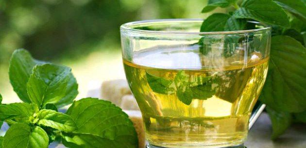 Como tomar o chá de boldo?