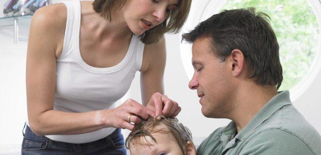 Remédios caseiros para evitar os piolhos
