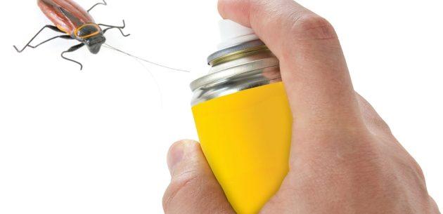 Repelentes naturais para combater as baratas
