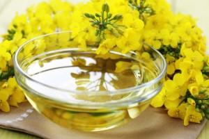 por que o azeite de canola é saudável