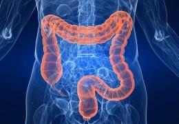 Dicas para recuperar a flora intestinal