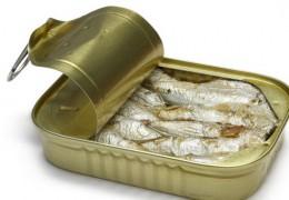 O consumo de peixe é benéfico para a luta contra o diabetes