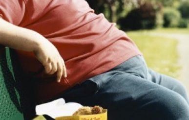 Componente natural pode ser novo tratamento para a obesidade