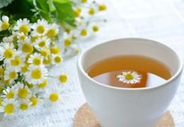 Chá de camomila para tratar infecções urinárias