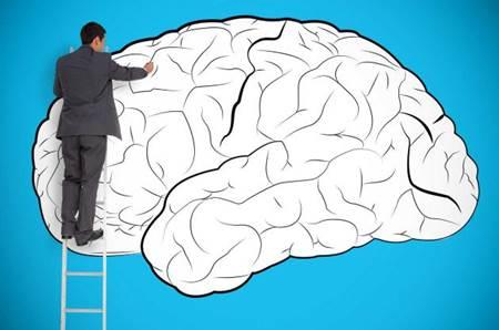 programação neurolinguística capa