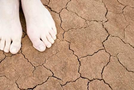 pés secos capa