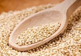 Quinoa para proteger o corpo