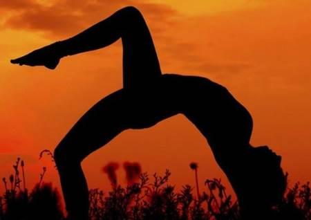 flexibilidade capa