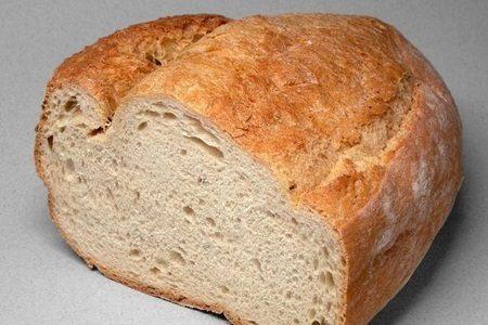 Pão de trigo transgênico adequado para celíacos