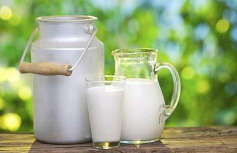 Benefícios e desvantagens do leite de vaca