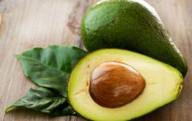 Razões para comer mais abacate