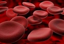Possíveis causas de sangue nas fezes