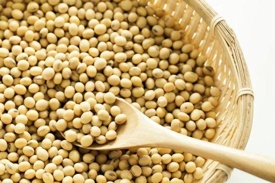 Razões para não consumir soja-2