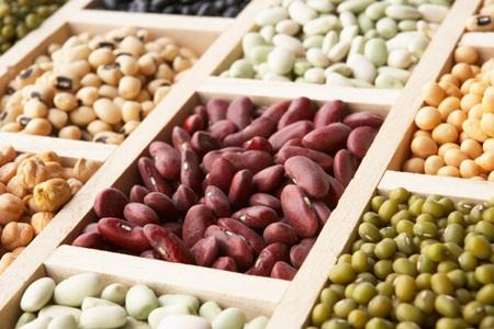 O teor de proteína de vários legumes