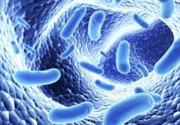 Como manter a pele livre de germes naturalmente