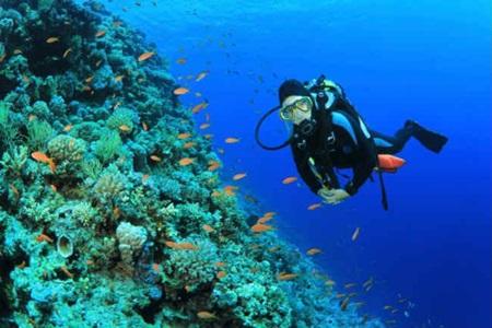 Benefícios físicos de mergulho