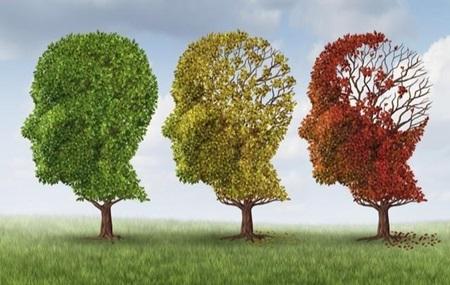 Dia Mundial da Doença de Alzheimer: A prevenção ao fazer exercícios