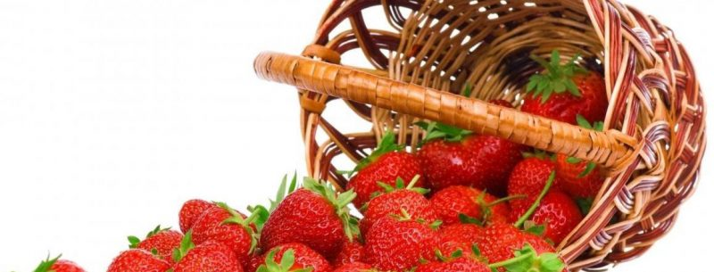 Morangos contra o colesterol