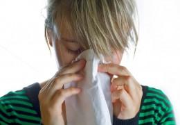 Os melhores alimentos contra os sintomas de gripes e resfriados
