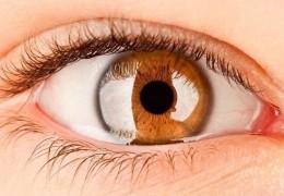 Os melhores alimentos para cuidar dos olhos