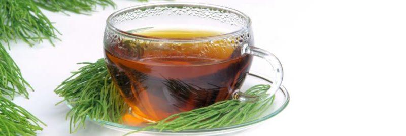 Os melhores chás para limpar os rins