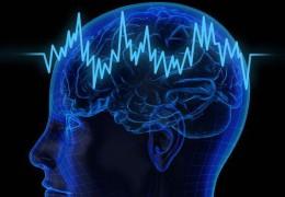 Dicas simples para treinar e melhorar o desempenho do seu cérebro