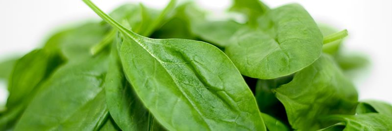 4 super alimentos para cuidar da saúde do pâncreas