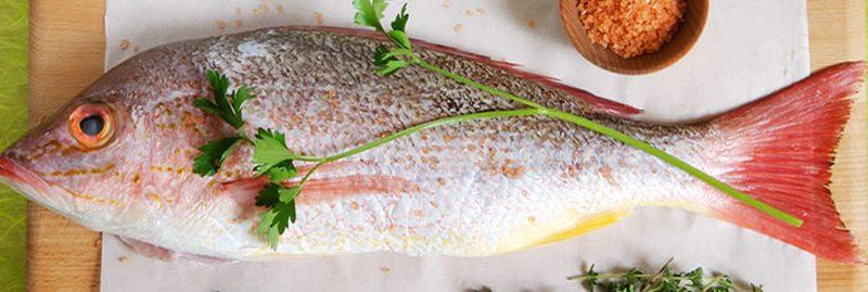 Peixe: um poderoso alimento contra a osteoporose