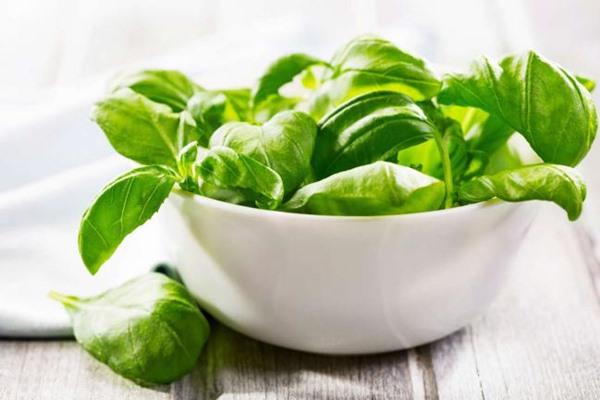 Alimentos alcalinos para manter o corpo em equilíbrio-7