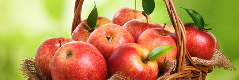 Maçã: benefícios dessa poderosa fruta para o nosso organismo