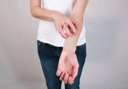 Doença do carrapato e febre maculosa: sintomas e tratamentos