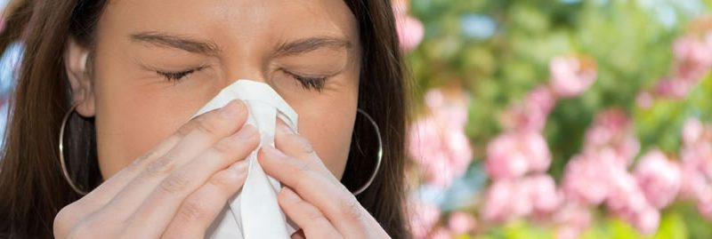 Rinite alérgica: sintomas, causas e melhores tratamentos