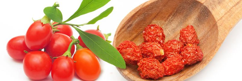 10 grandes benefícios da goji berry para a saúde