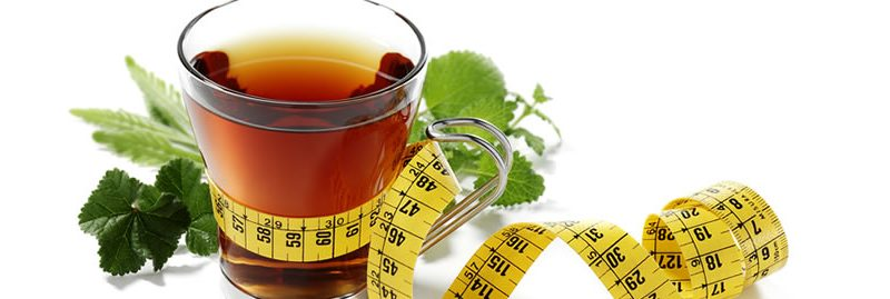 Perder peso: ervas e plantas para emagrecer com saúde