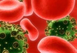 5 alimentos que podem enfraquecer o sistema imunológico