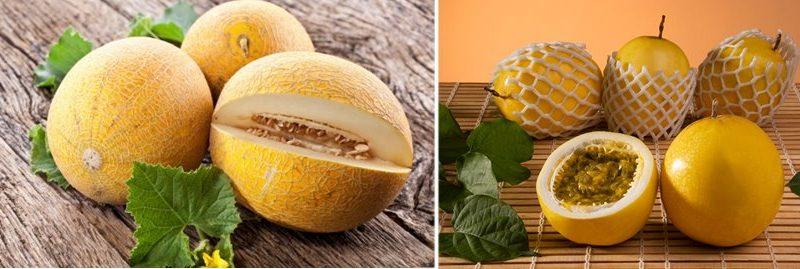 Melão e maracujá: frutas com muitos benefícios para a saúde