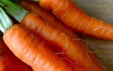 10 benefícios da cenoura para a beleza e saúde