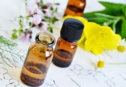 Propriedades, benefícios e contra-indicações do óleo de prímula