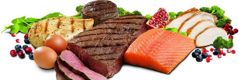 Por que devemos adicionar mais proteínas em nossa dieta?
