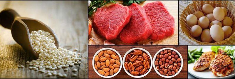 Proteínas: fontes, funções e sintomas de sua deficiência