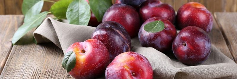Benefícios da ameixa e suas propriedades para saúde