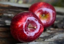 As melhores frutas para aliviar a dor estomacal